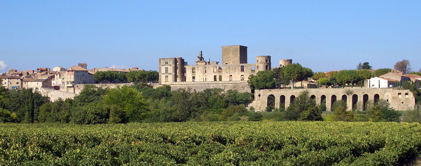 Chateau de la Tour d'Aigues